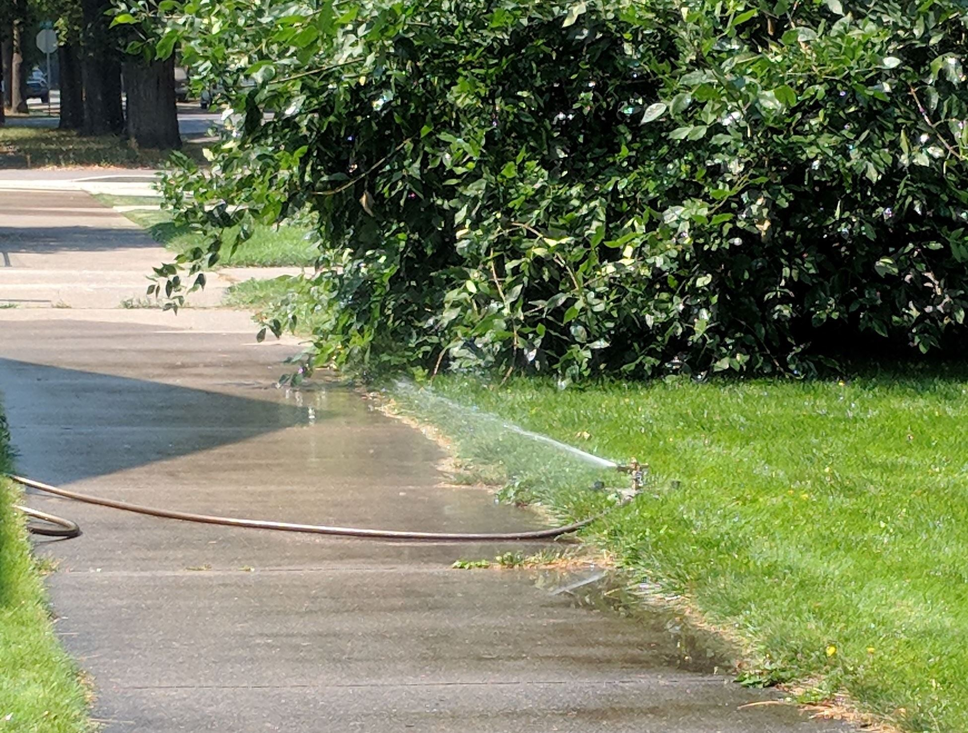 Sprinkler watering the sidewalk