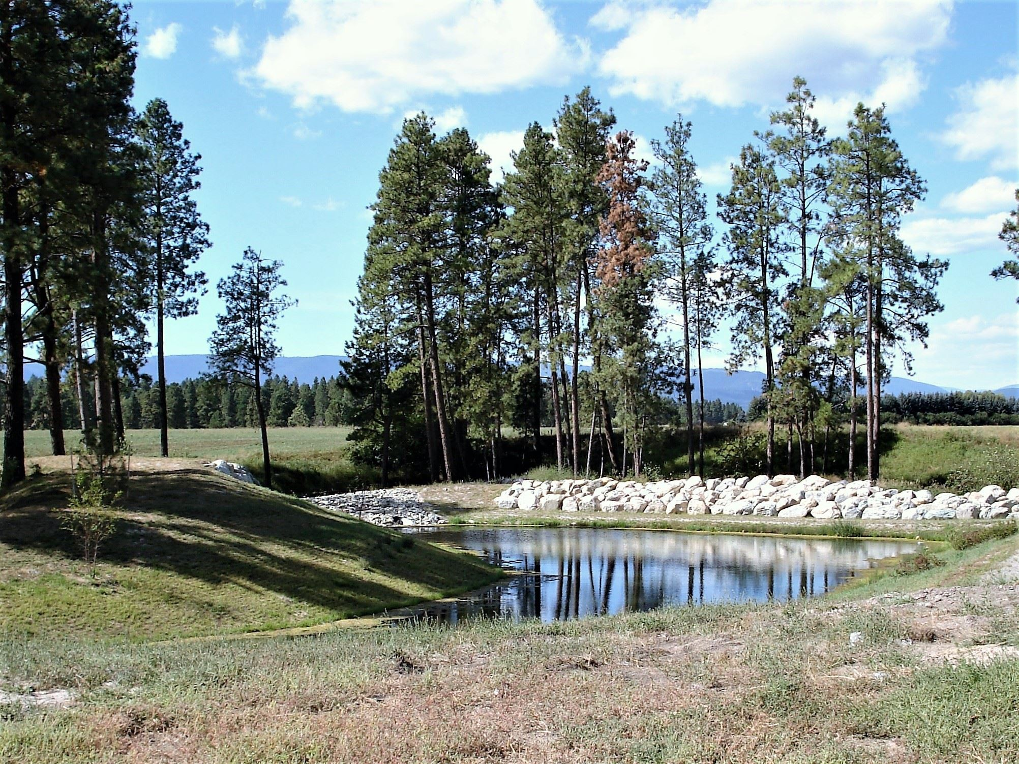 Stormwater management control pond with trees around it